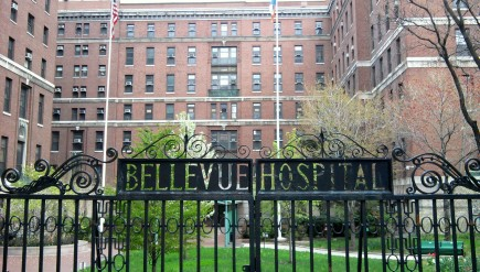 Bellevue Hospital